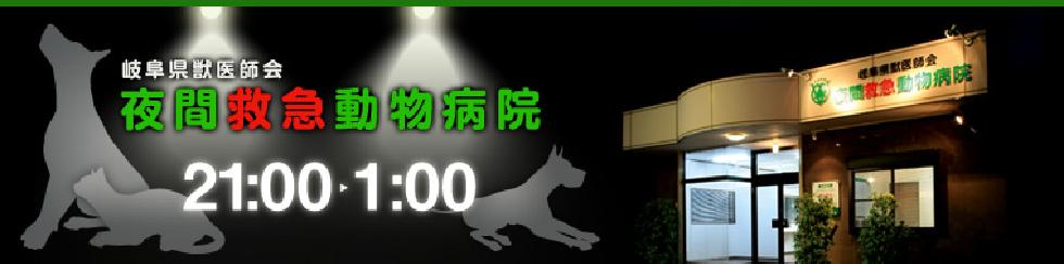 夜間 動物 病院